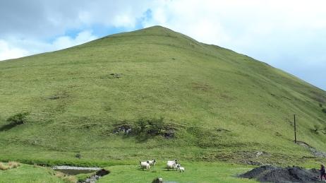 Craignorth Hill